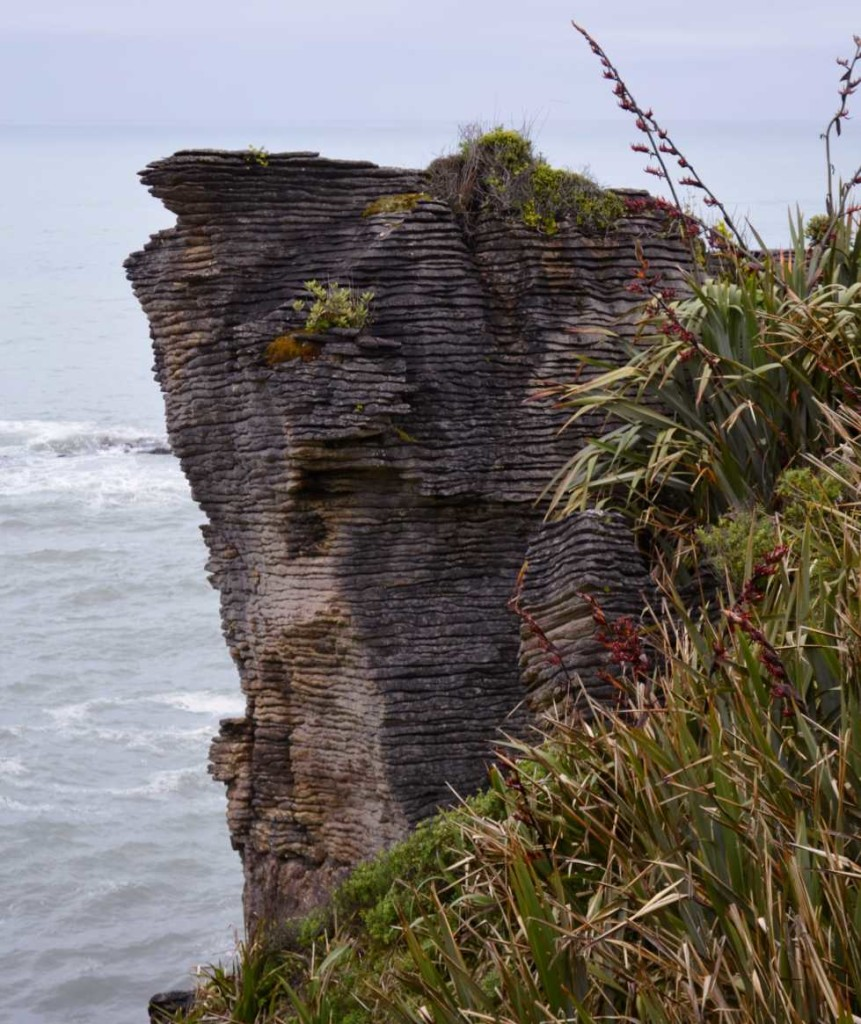 Pancake Rocks Punakaiki NewZealand Neuseeland, NZ, Pancakes, travel, world, travelling, blogger, travel blog germany, blog stuttgart, #newceland, Punakaiki Blowholes, West Coast New Zealand, Neuseeland Natur, Nature, photography © ceyourgoals